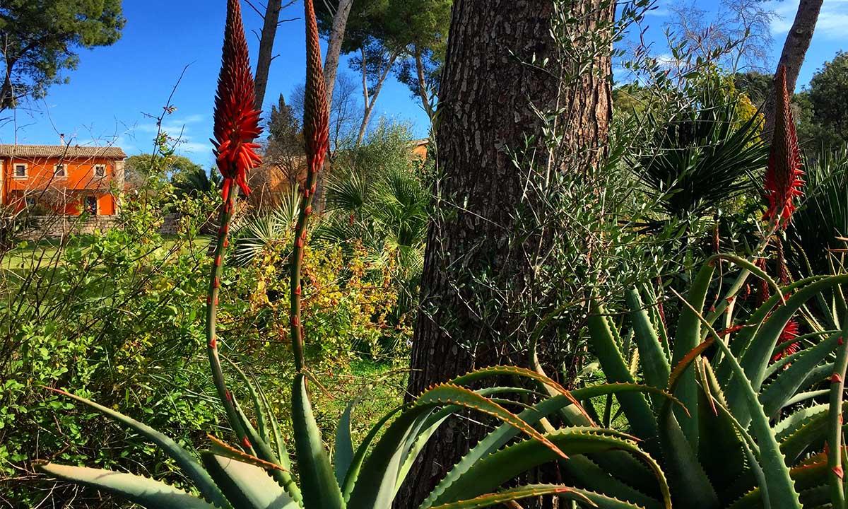 giardino-biviere
