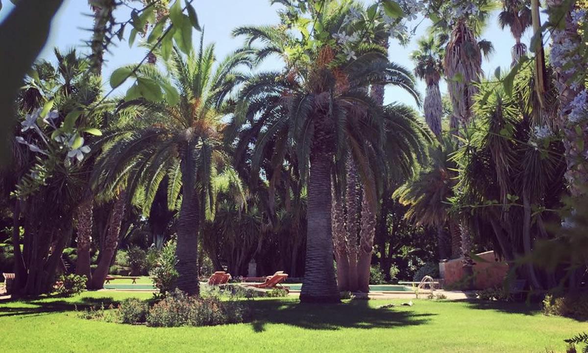 giardino-ilbivere-5
